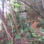 森のトイレ