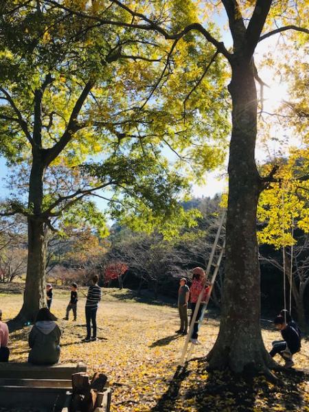 さわやかな秋日和でした